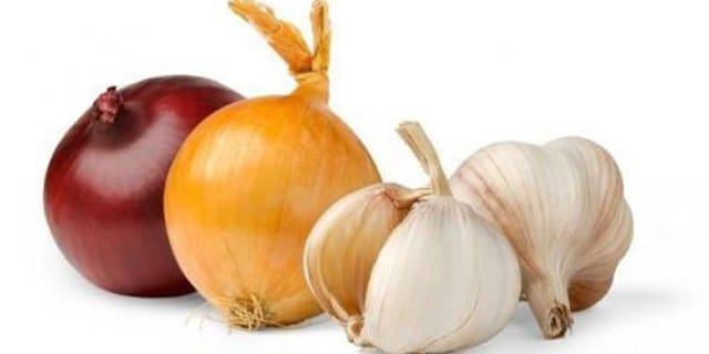 Shih Tzu foods - Bulb Vegetables