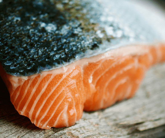 Salmon - safe for Shih tzus