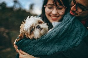 Corona Virus and Dogs