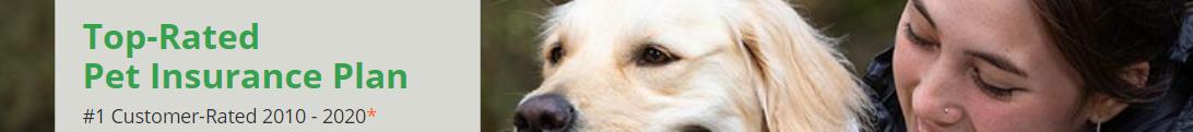 Pet Insurance USA